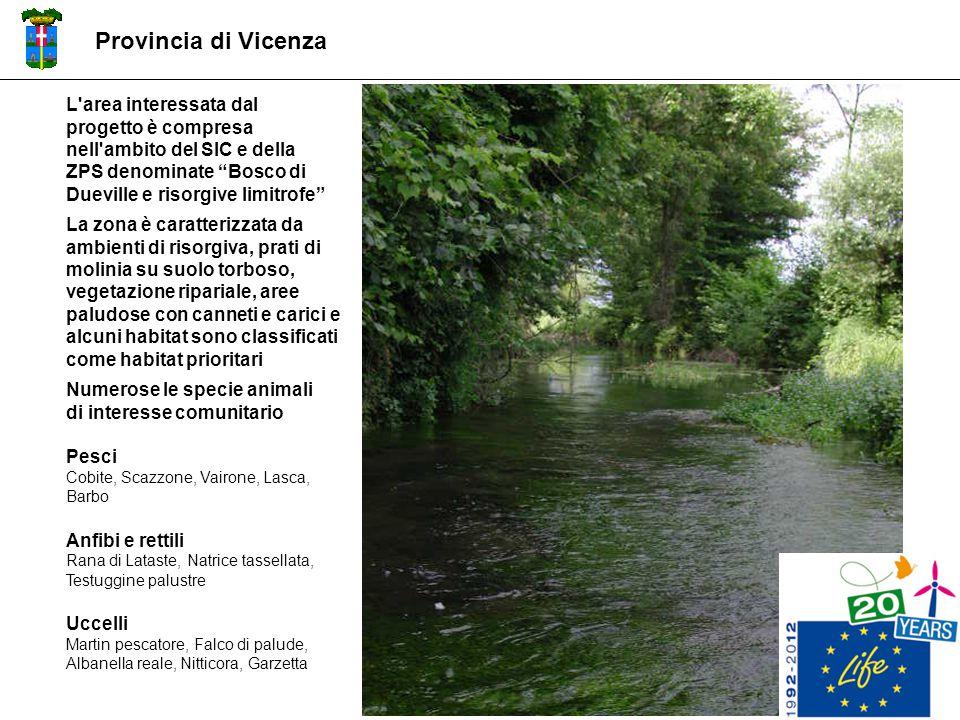 Provincia di Vicenza L area interessata dal progetto è compresa nell ambito del SIC e della ZPS denominate Bosco di Dueville e risorgive limitrofe