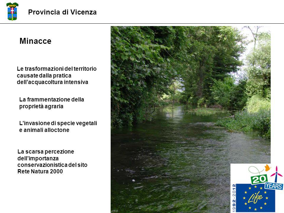Minacce Provincia di Vicenza