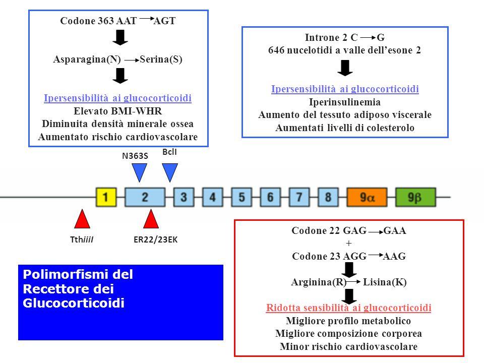 Polimorfismi del Recettore dei Glucocorticoidi Codone 363 AAT AGT