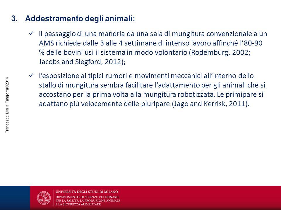 Addestramento degli animali: