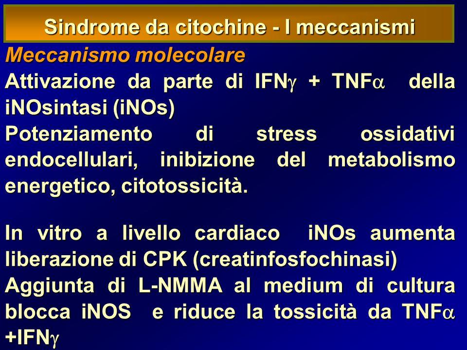 Sindrome da citochine - I meccanismi