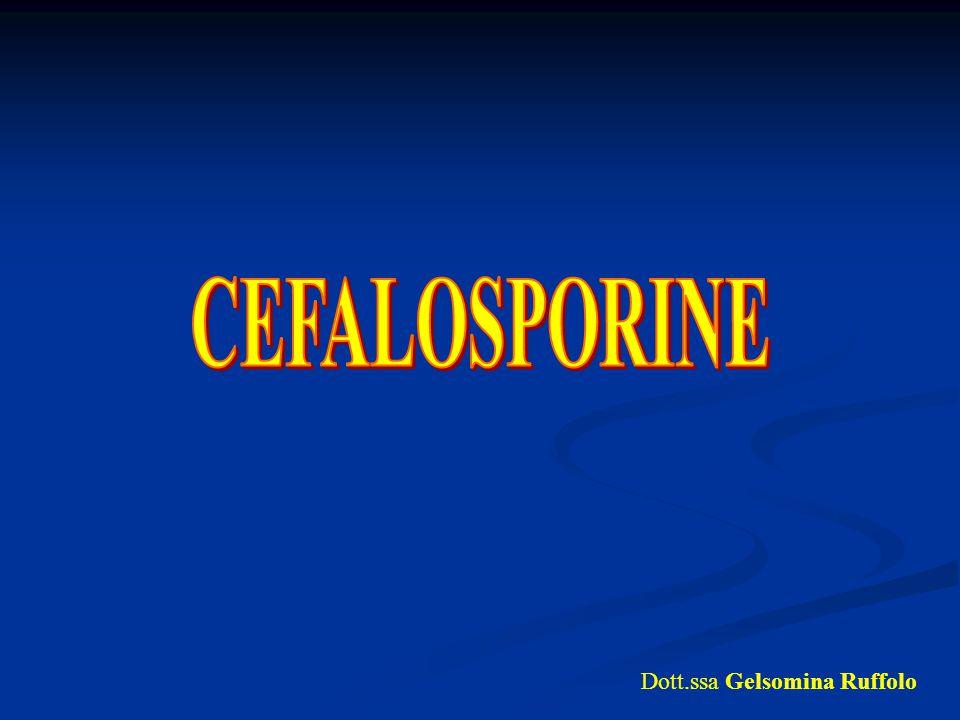 CEFALOSPORINE Dott.ssa Gelsomina Ruffolo