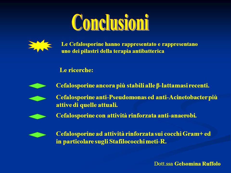 Conclusioni Le ricerche: