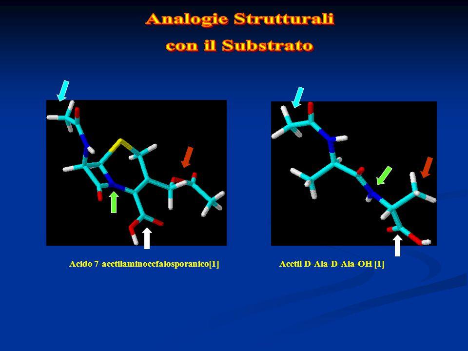Analogie Strutturali con il Substrato