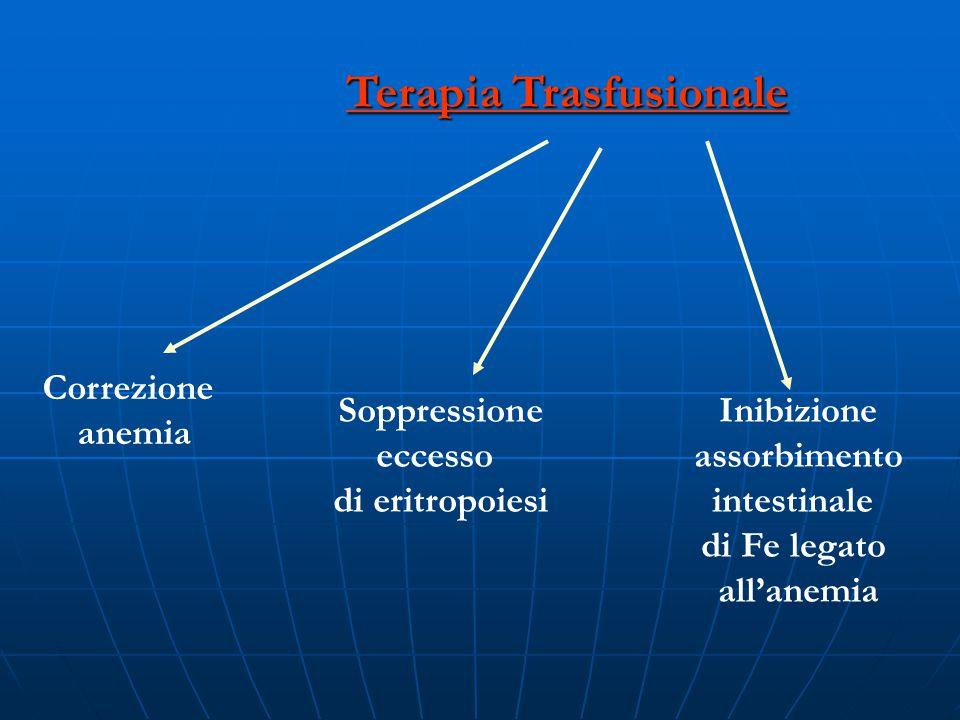 Terapia Trasfusionale
