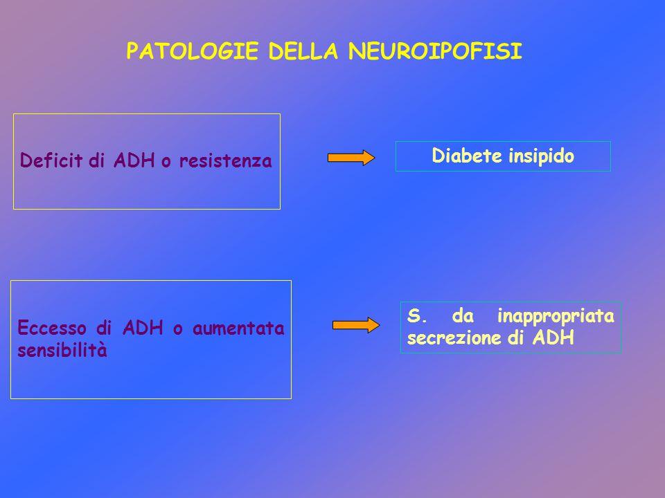 PATOLOGIE DELLA NEUROIPOFISI