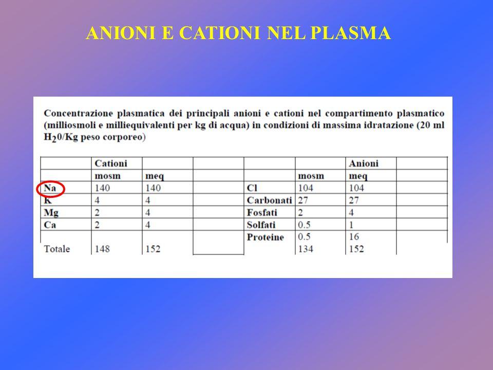 ANIONI E CATIONI NEL PLASMA
