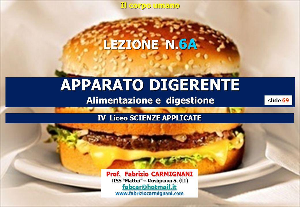 APPARATO DIGERENTE LEZIONE N.6A Alimentazione e digestione