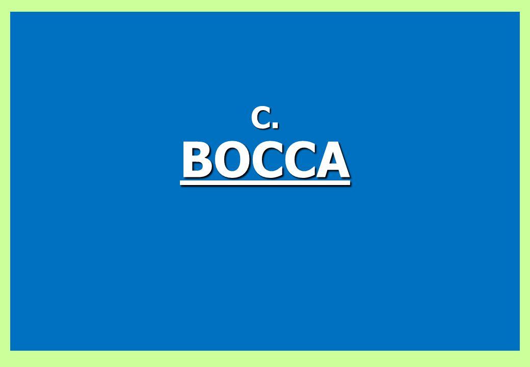 C. BOCCA