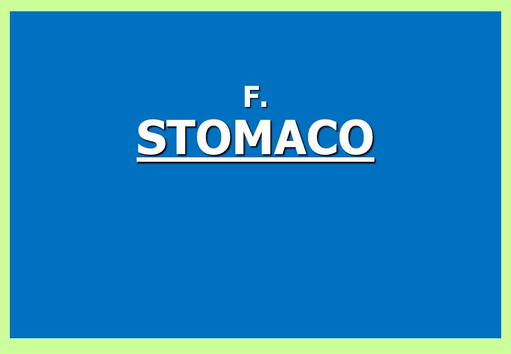 F. STOMACO