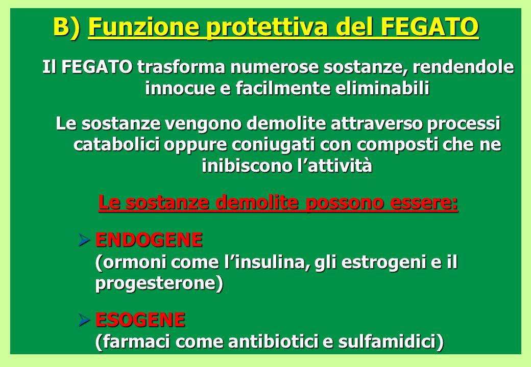B) Funzione protettiva del FEGATO Le sostanze demolite possono essere: