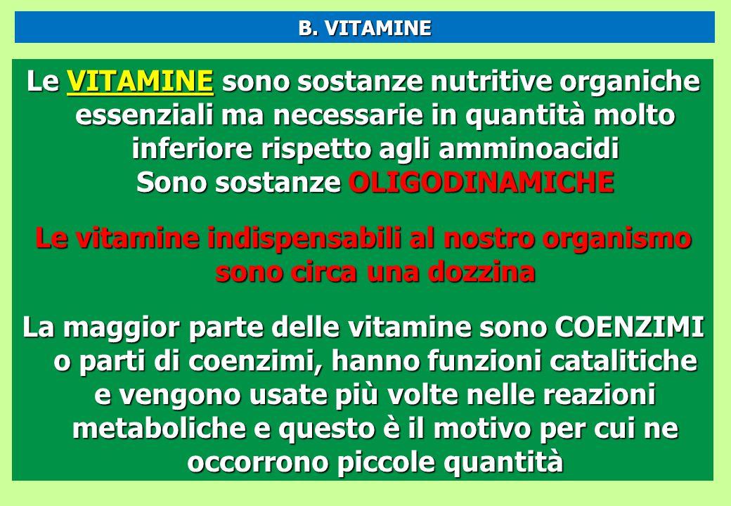 Le vitamine indispensabili al nostro organismo sono circa una dozzina