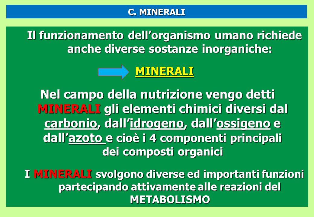 C. MINERALI Il funzionamento dell'organismo umano richiede anche diverse sostanze inorganiche: MINERALI.