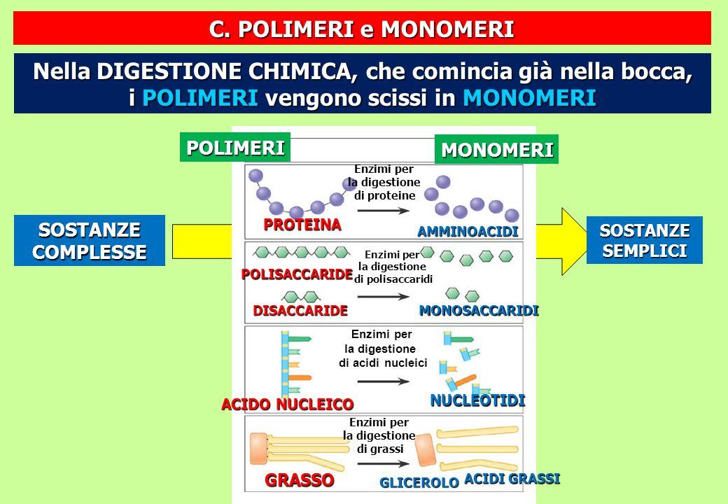 C. POLIMERI e MONOMERI Nella DIGESTIONE CHIMICA, che comincia già nella bocca, i POLIMERI vengono scissi in MONOMERI.