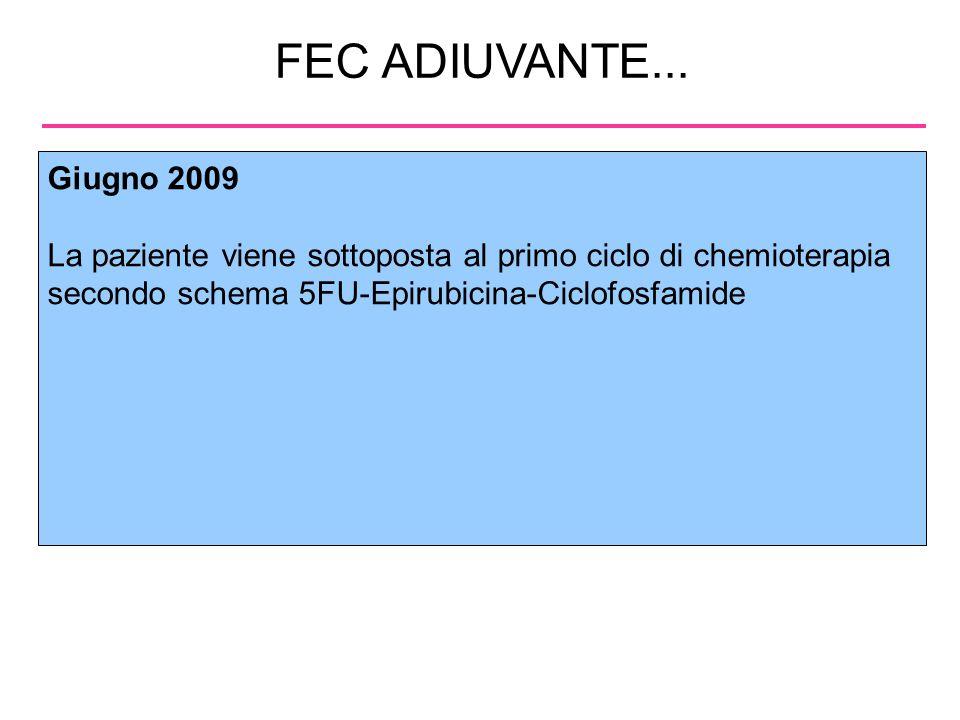 FEC ADIUVANTE... Giugno 2009. La paziente viene sottoposta al primo ciclo di chemioterapia secondo schema 5FU-Epirubicina-Ciclofosfamide.