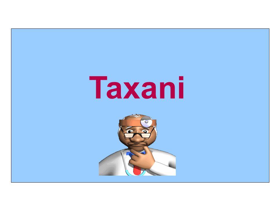 Taxani 13 13 13