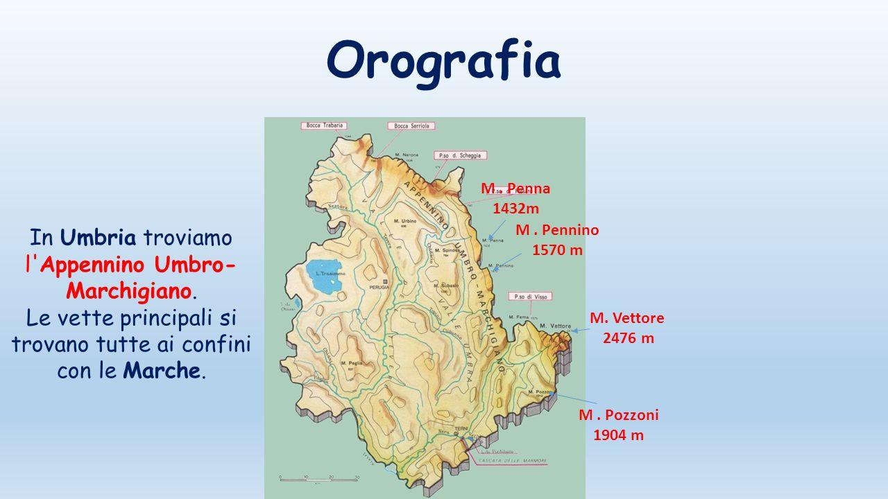 Orografia In Umbria troviamo l Appennino Umbro-Marchigiano.
