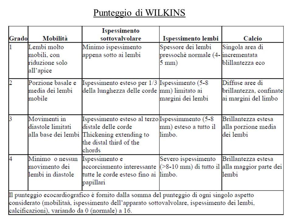 Punteggio di WILKINS