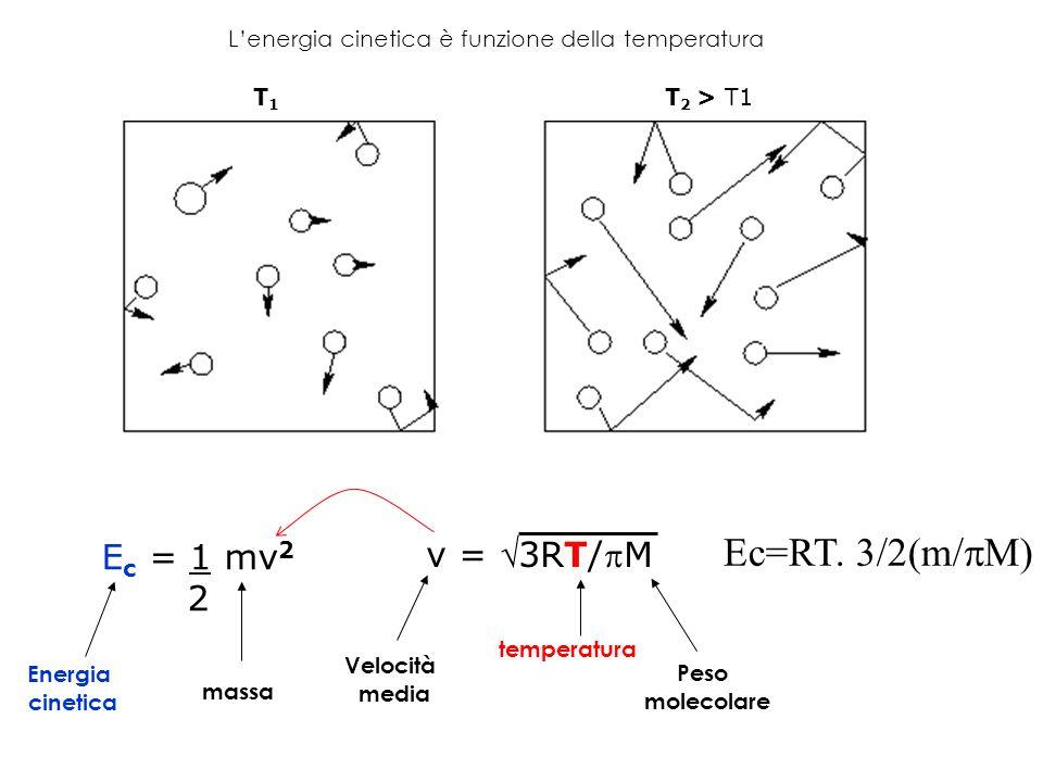 L'energia cinetica è funzione della temperatura