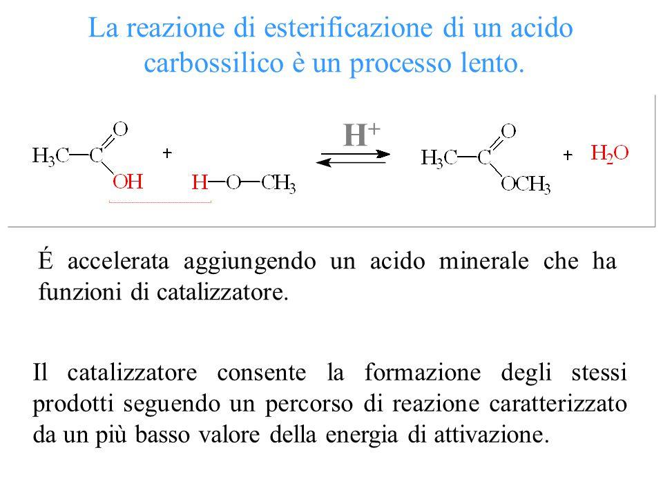H+ La reazione di esterificazione di un acido