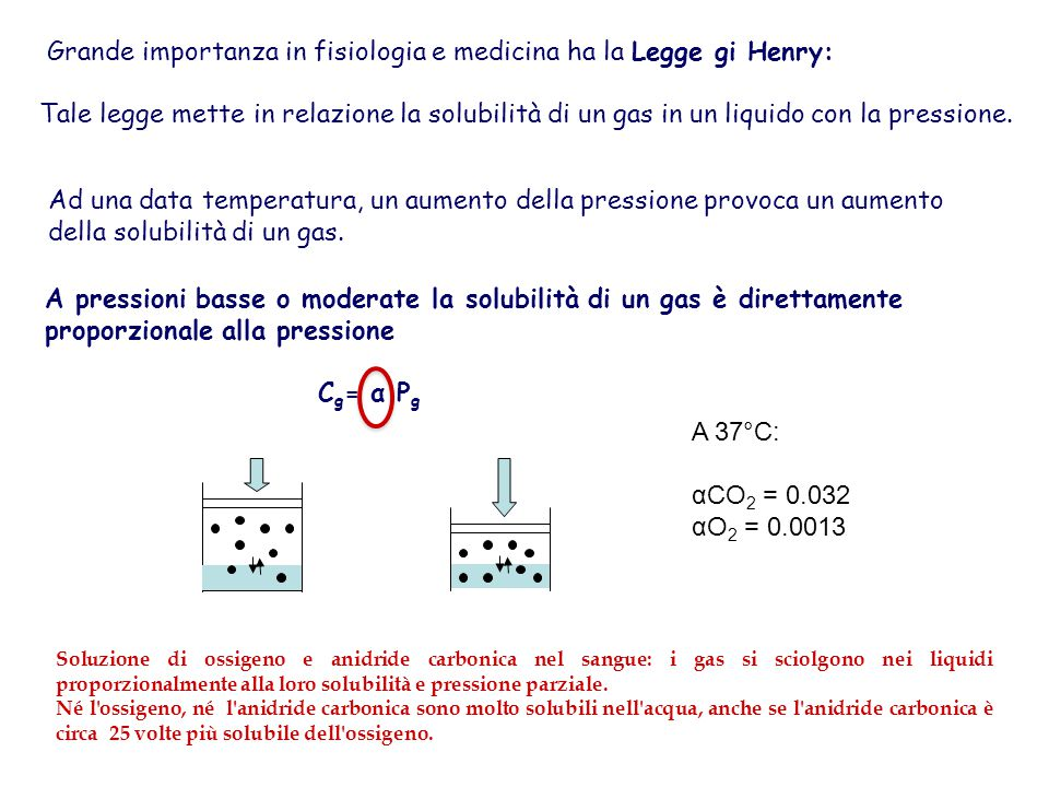 Grande importanza in fisiologia e medicina ha la Legge gi Henry: