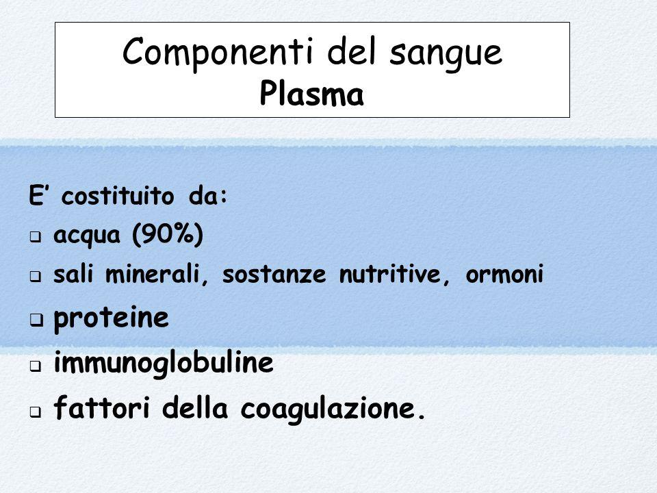 Componenti del sangue Plasma