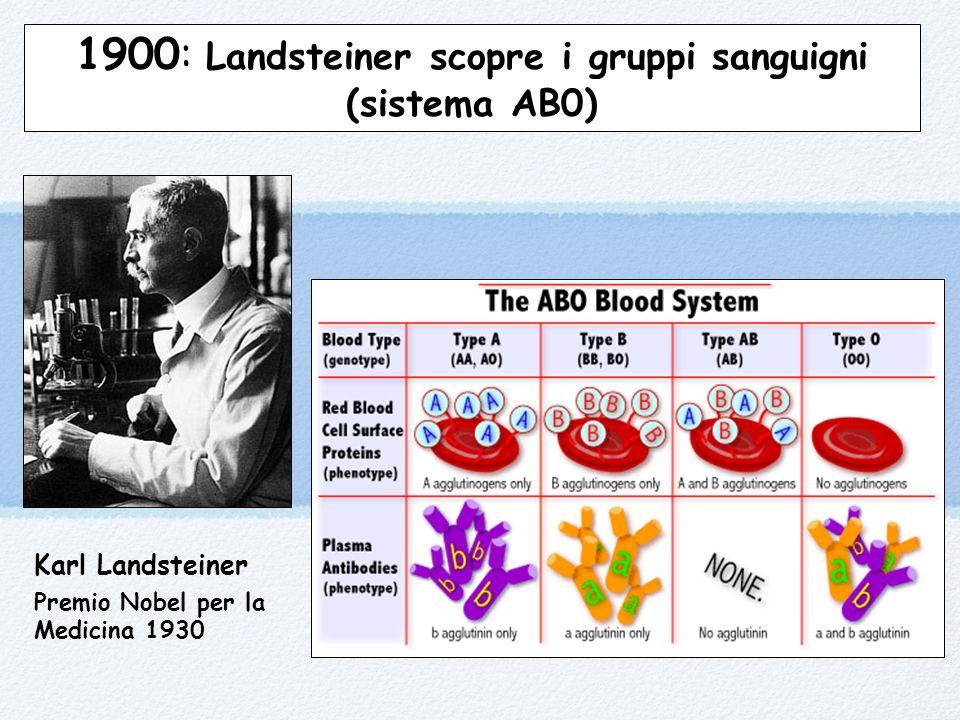 1900: Landsteiner scopre i gruppi sanguigni (sistema AB0)