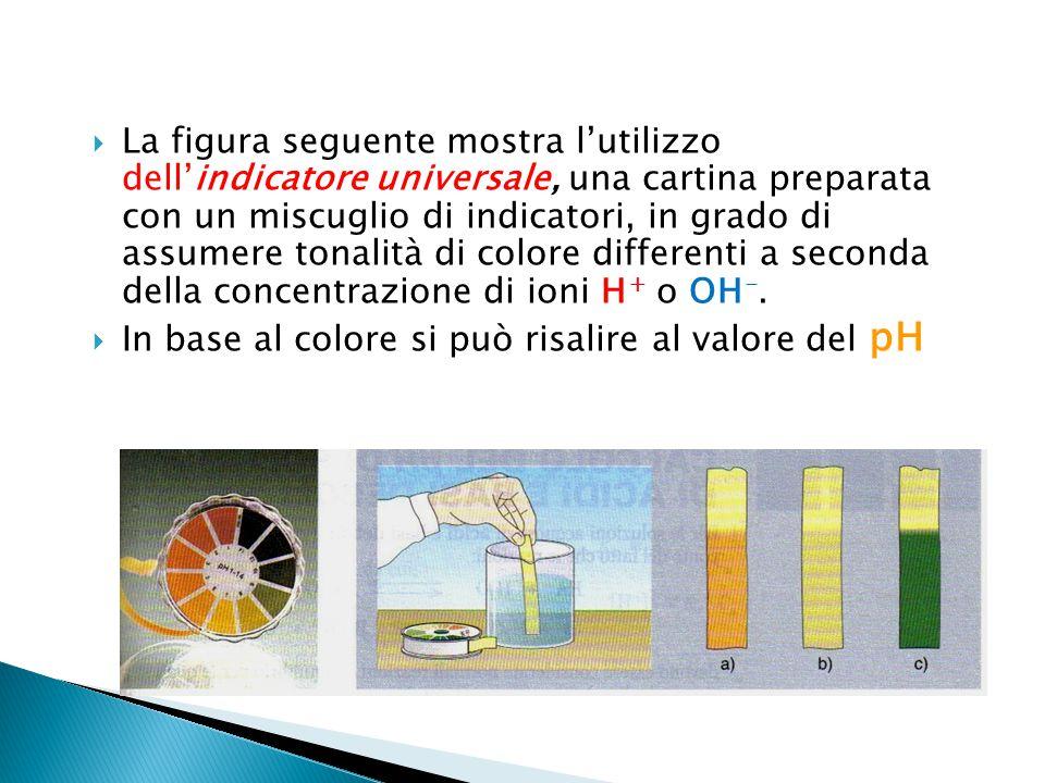 La figura seguente mostra l'utilizzo dell'indicatore universale, una cartina preparata con un miscuglio di indicatori, in grado di assumere tonalità di colore differenti a seconda della concentrazione di ioni H+ o OH-.