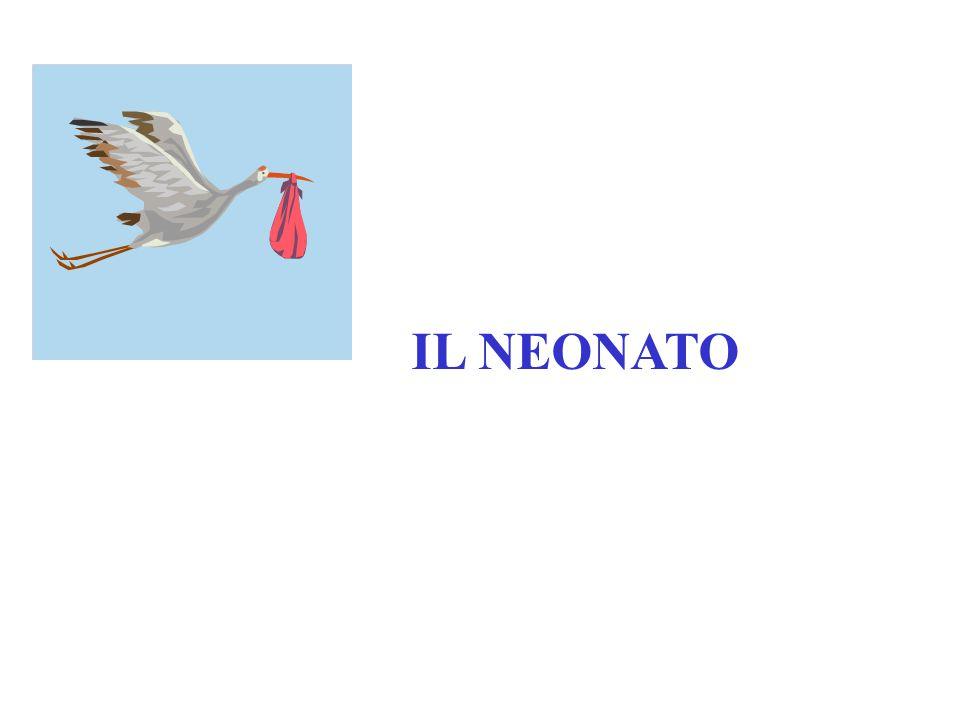 IL NEONATO