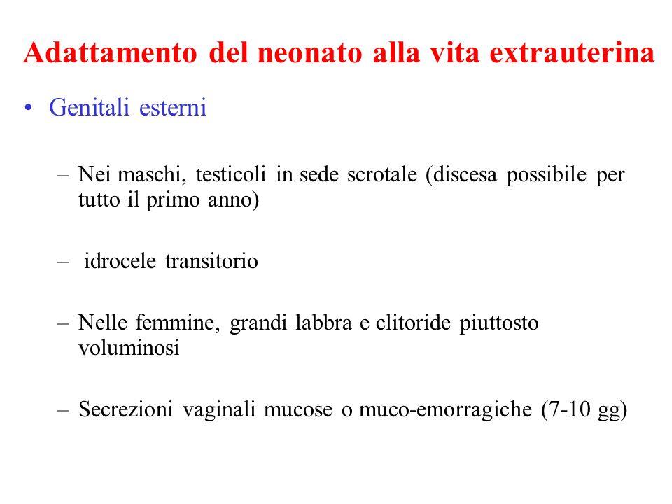 Adattamento del neonato alla vita extrauterina