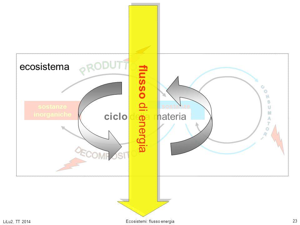 Ecosistemi: flusso energia