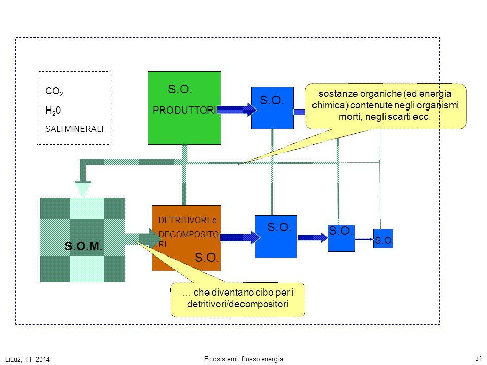 S.O. CO2. sostanze organiche (ed energia chimica) contenute negli organismi morti, negli scarti ecc.