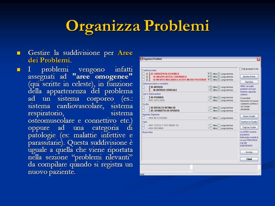 Organizza Problemi Gestire la suddivisione per Aree dei Problemi.