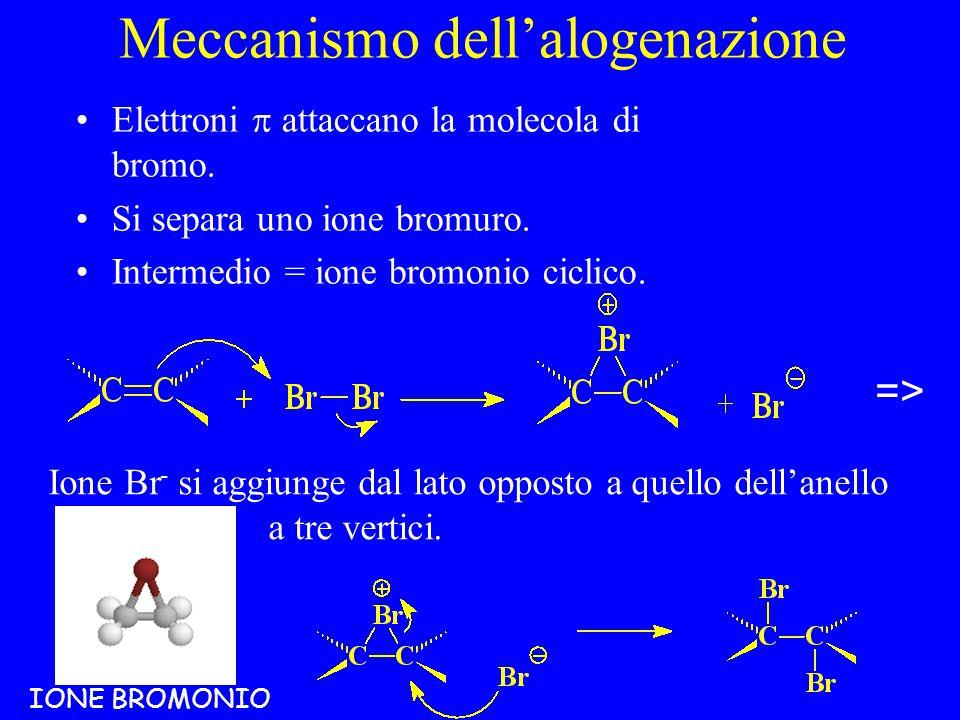 Meccanismo dell'alogenazione
