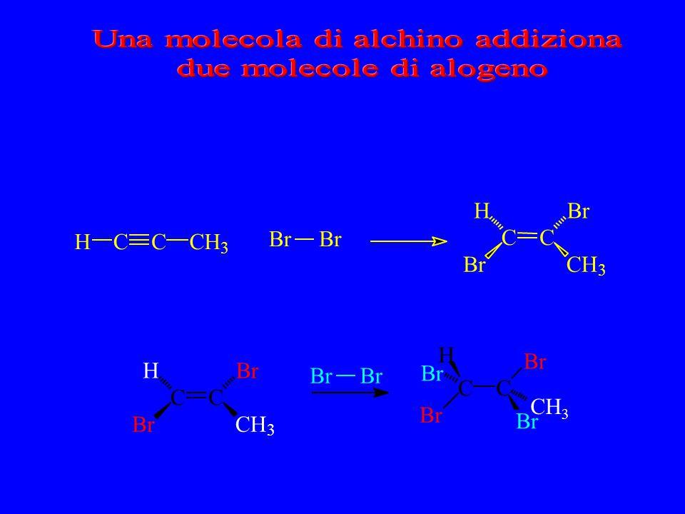 Una molecola di alchino addiziona due molecole di alogeno