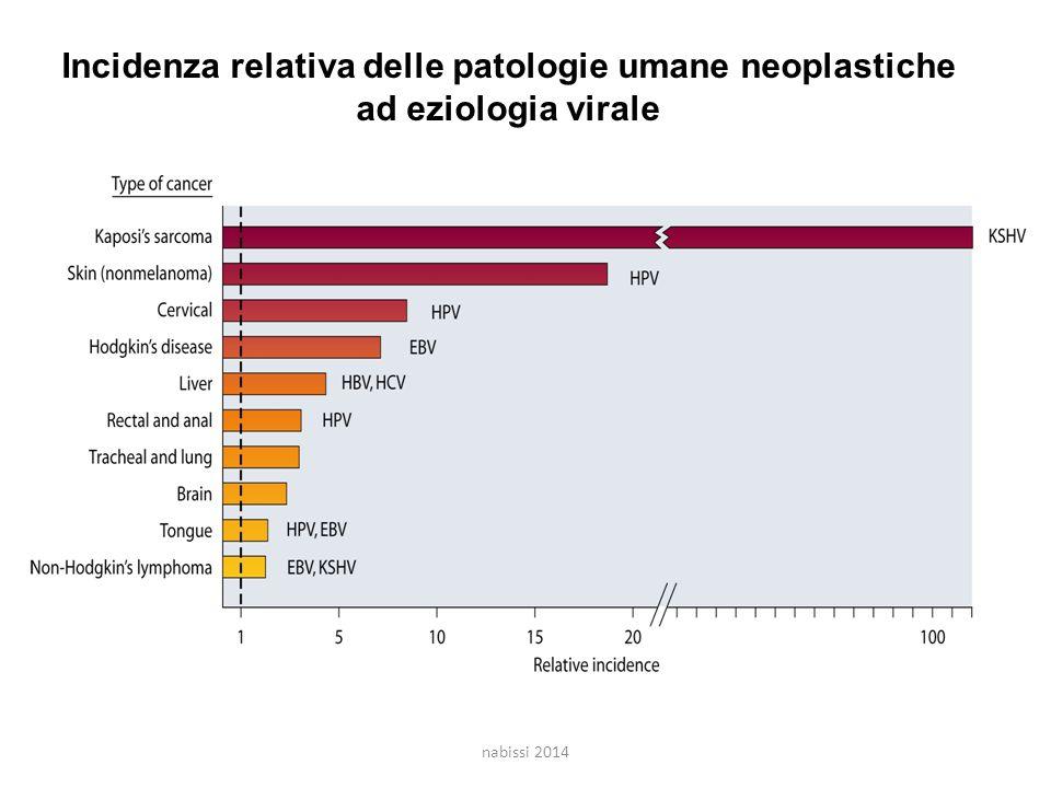 Incidenza relativa delle patologie umane neoplastiche