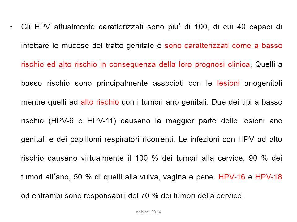 Gli HPV attualmente caratterizzati sono piu' di 100, di cui 40 capaci di infettare le mucose del tratto genitale e sono caratterizzati come a basso rischio ed alto rischio in conseguenza della loro prognosi clinica. Quelli a basso rischio sono principalmente associati con le lesioni anogenitali mentre quelli ad alto rischio con i tumori ano genitali. Due dei tipi a basso rischio (HPV-6 e HPV-11) causano la maggior parte delle lesioni ano genitali e dei papillomi respiratori ricorrenti. Le infezioni con HPV ad alto rischio causano virtualmente il 100 % dei tumori alla cervice, 90 % dei tumori all'ano, 50 % di quelli alla vulva, vagina e pene. HPV-16 e HPV-18 od entrambi sono responsabili del 70 % dei tumori della cervice.