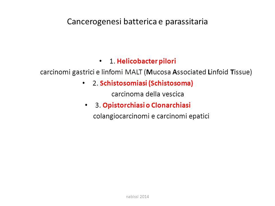 Cancerogenesi batterica e parassitaria