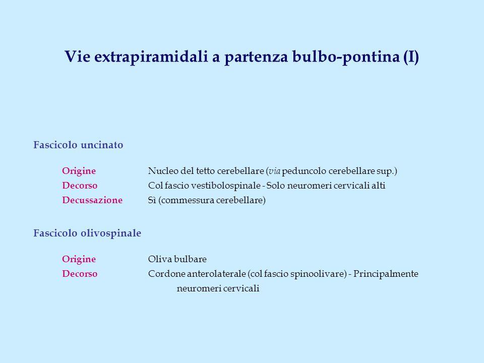 Vie extrapiramidali a partenza bulbo-pontina (I)