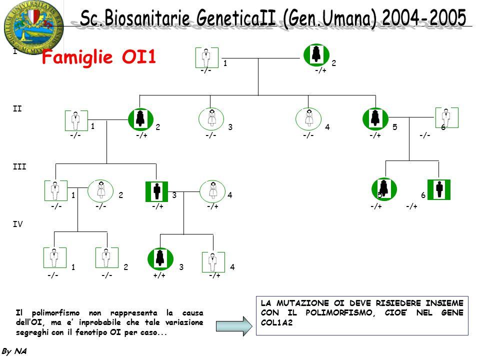 Famiglie OI1 I II III IV 1 2 -/- -/+ 1 2 3 4 5 6