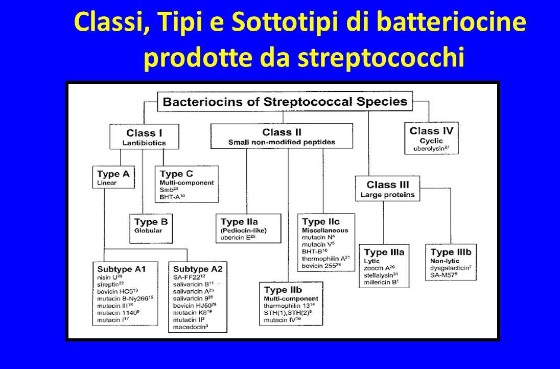 Classi, Tipi e Sottotipi di batteriocine prodotte da streptococchi