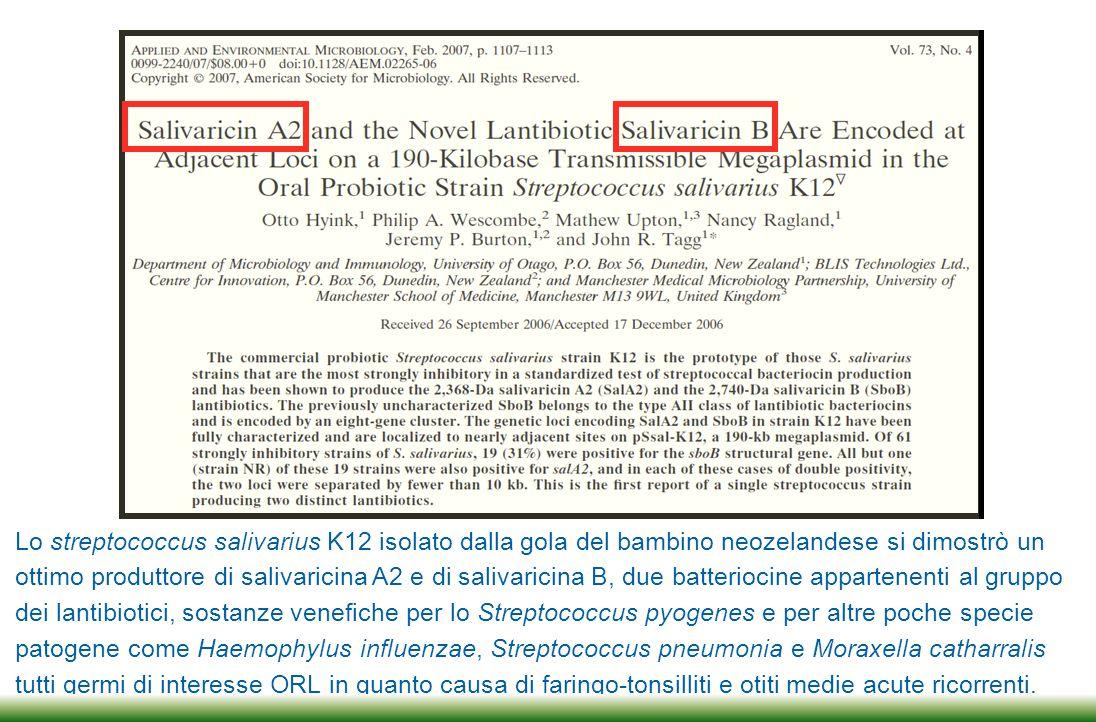 Lo streptococcus salivarius K12 isolato dalla gola del bambino neozelandese si dimostrò un