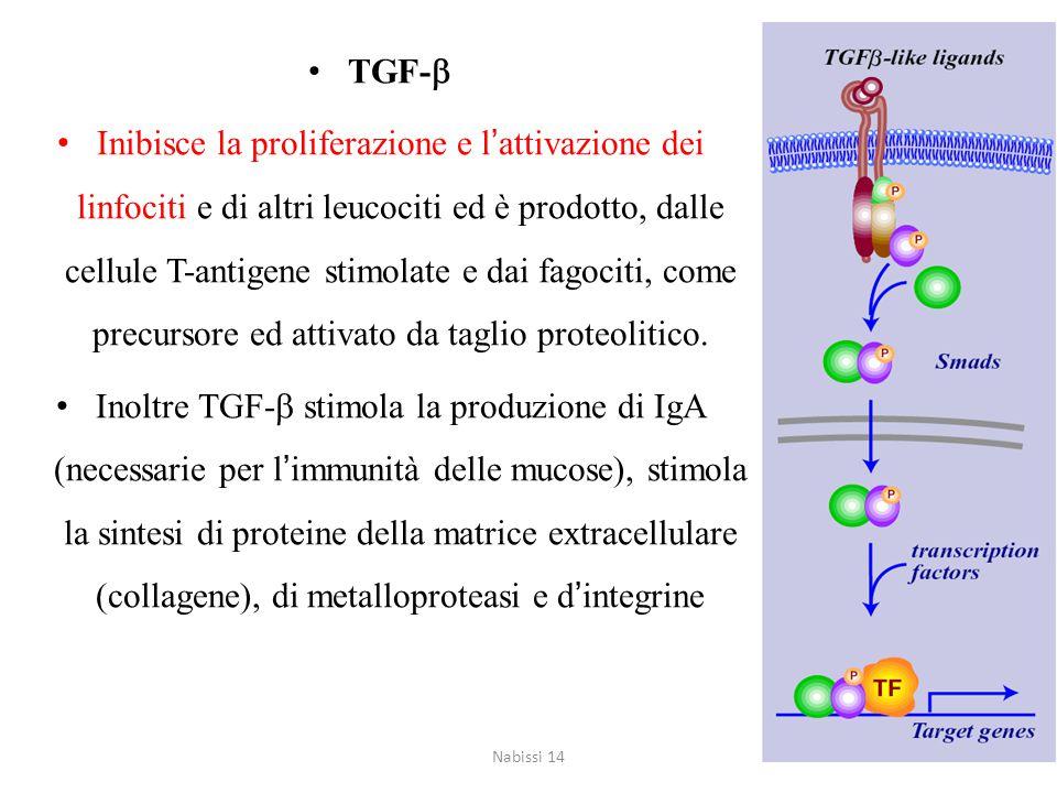 TGF-b
