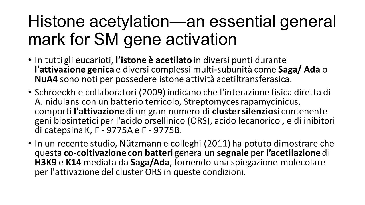 Histone acetylation—an essential general mark for SM gene activation