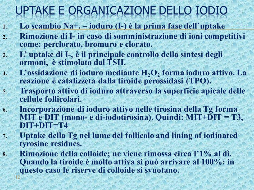 Uptake e organicazione dello Iodio
