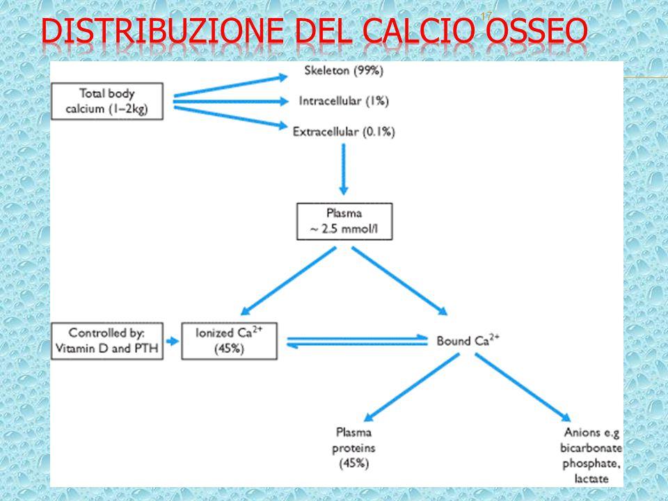 Distribuzione del calcio osseo