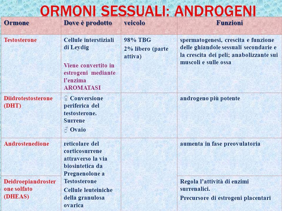 Ormoni sessuali: androgeni