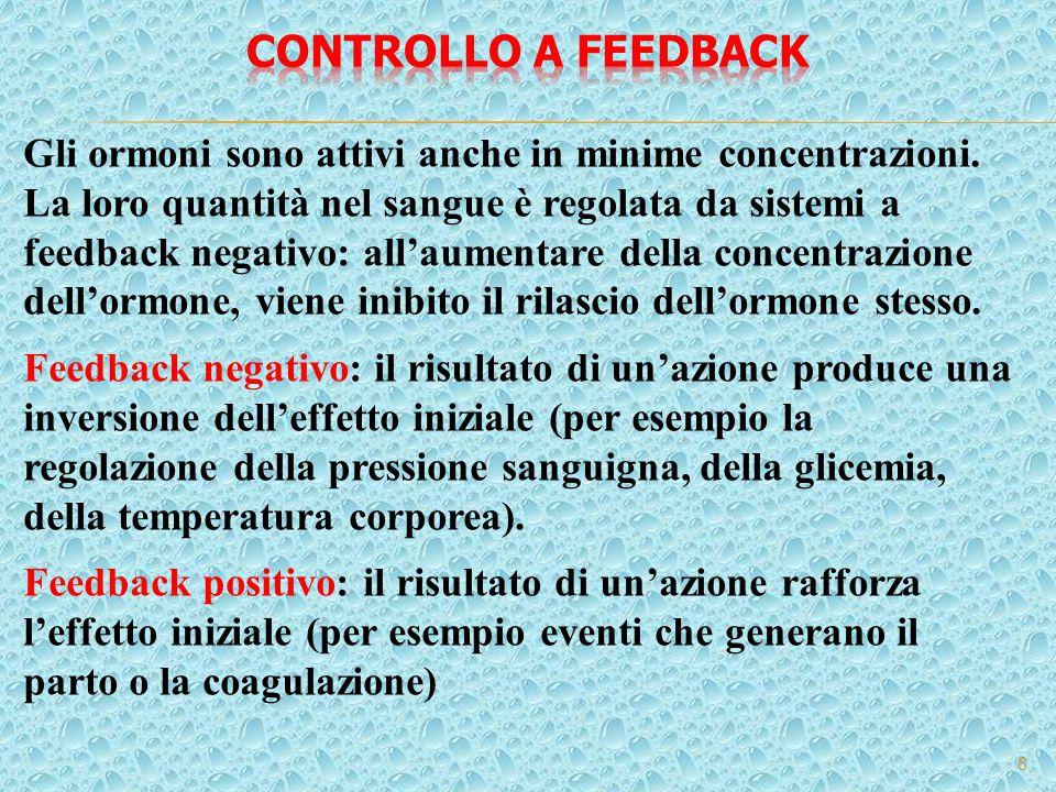 Controllo a feedback