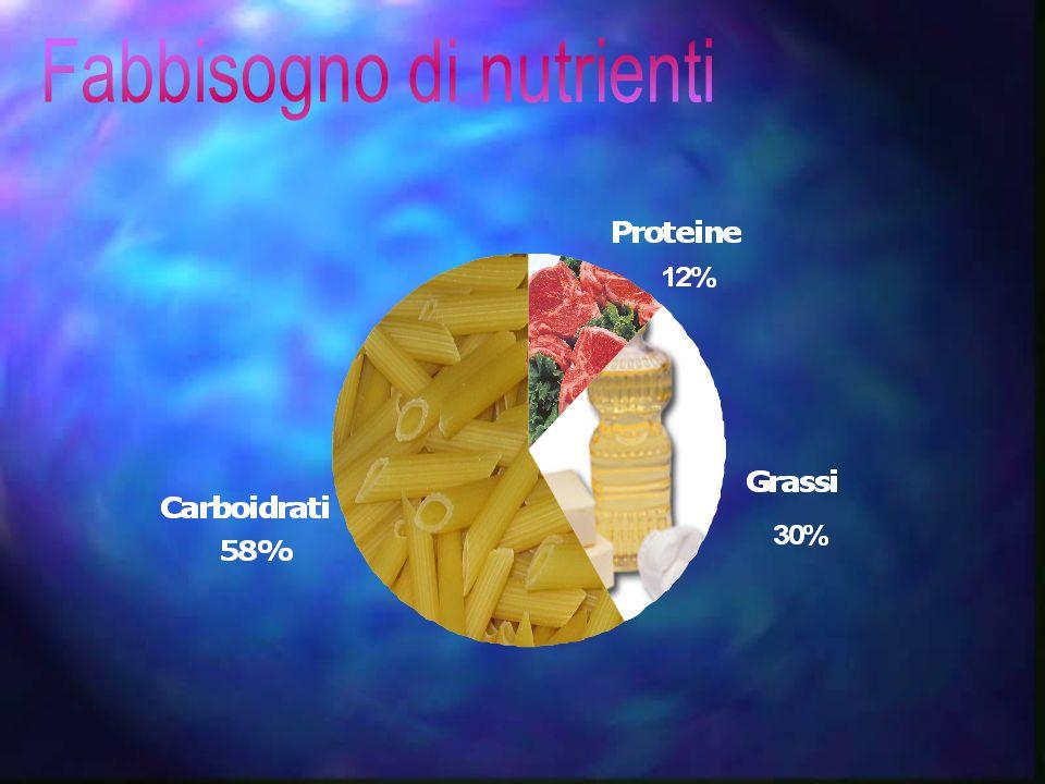 Fabbisogno di nutrienti