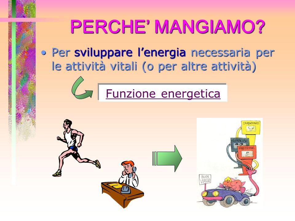 PERCHE' MANGIAMO Per sviluppare l'energia necessaria per le attività vitali (o per altre attività)